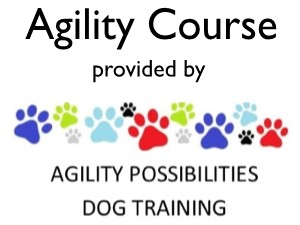 Agility Possibilities